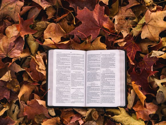 A Bible lays open on a backdrop of red and orange autumn leaves.