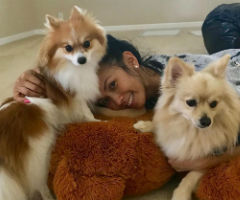 Tia Cao with her two dogs, which are certified emotional support animals.