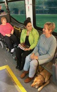 People sitting on city bus with service dog