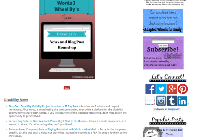 Screen shot from Emily Ladau's blog: http://wordsiwheelby.com/2014/06/june-disability-news-blog-round-up/