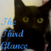 Image of a black cat. Superimposed over the black cat are the words: The Third Glance in the lower left hand corner.