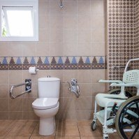 WC, grab rails and shower chair