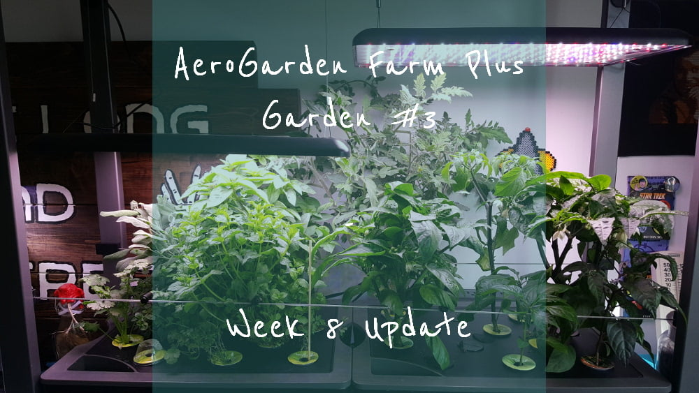 AeroGarden Farm Plus Week 8 title card