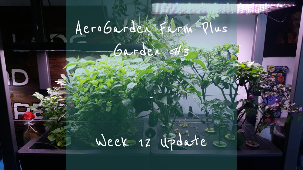 AeroGarden Farm Plus Week 12 title card