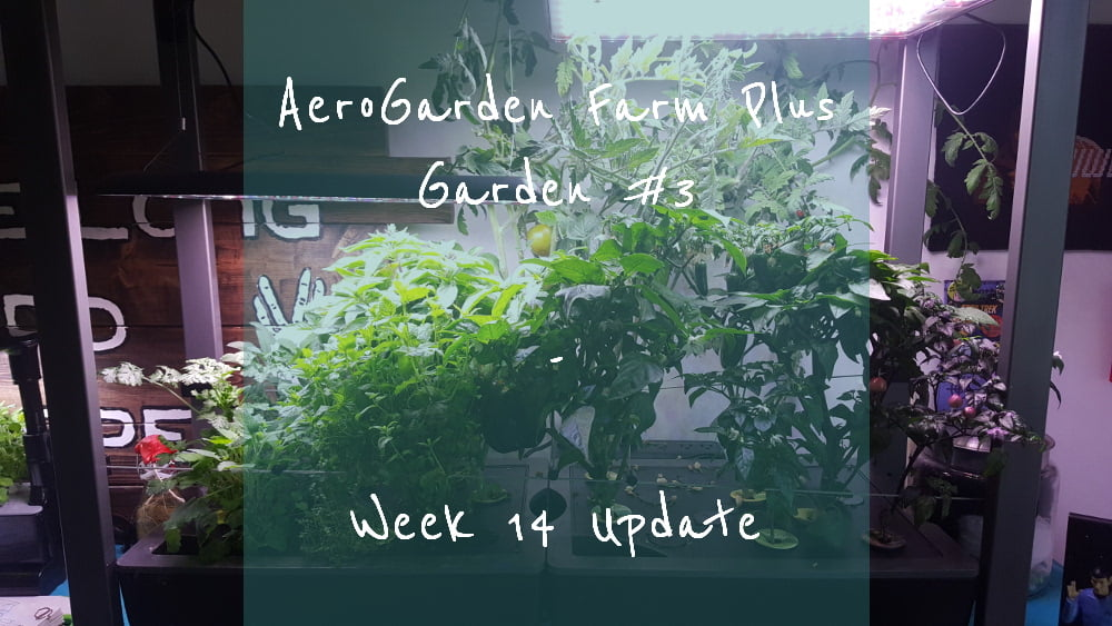 AeroGarden Farm Plus Week 14 title card