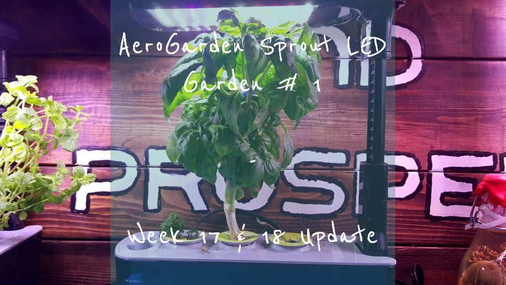 AeroGarden Sprout LED Garden 1 Week 17 – 18 title card