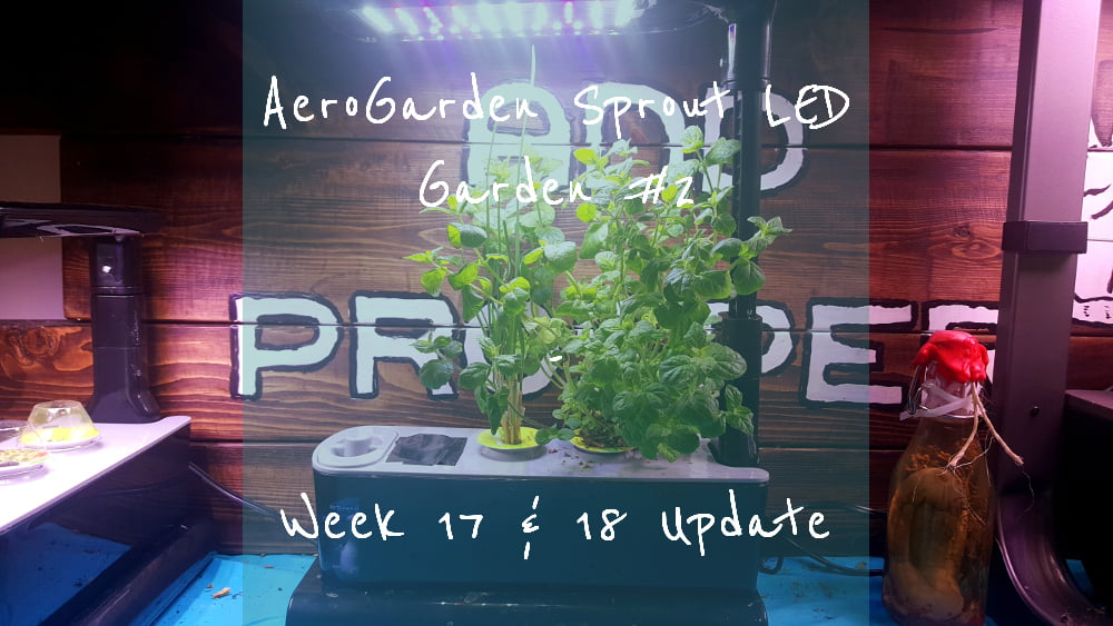 AeroGarden Sprout LED Garden 2 Week 17 and 18 title card