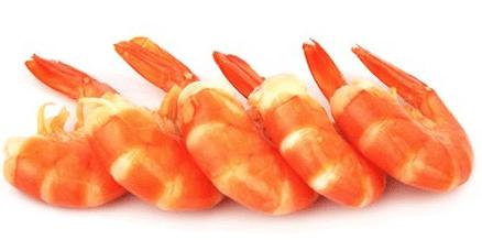Red Shrimp Tail