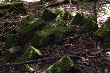 Collapsed Chimney, Abandoned Farm Sand Island, Apostle Islands National Lakeshore (William Cronon)
