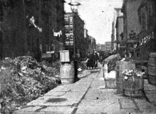 Trash piled up on Varick Street in 1893 New York City, before sanitation reform.Harper's Weekly