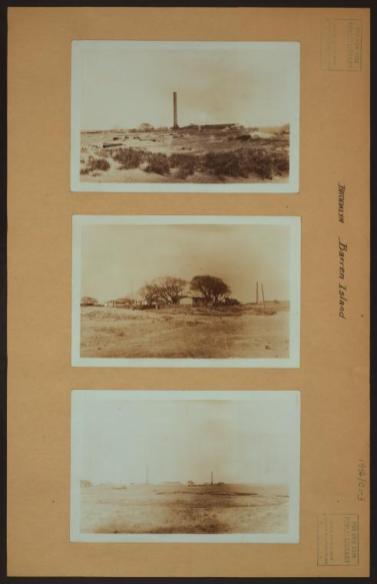 Barren Island -[Horse disposal plant in Brooklyn.(1931) Photo: Percy Loomis Sperr. NYPL