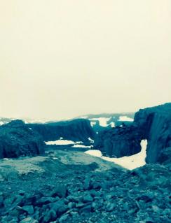 Photo of Norwegian Arctic field site by Hugo Reinert.