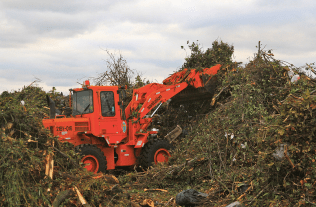 Clearing trees the day after Hurricane Sandy. Photo by Michael Anton, DSNY.