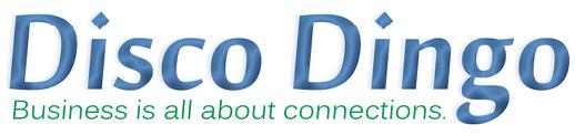 Disco Dingo, LLC
