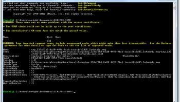 Using VMware PowerCLI with Self-Signed TLS/SSL Certificates on