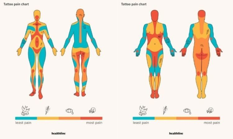 Tatoo pain chart según el sexo. (Pinterest)