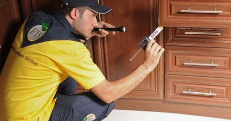 Pest Control for Three Rooms