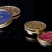 Yasa Caviar 50g or 100g