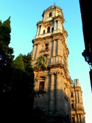 The cathedral of Málaga