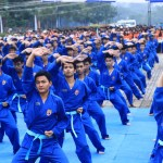 Vovinam – The Vietnamese Martial Art