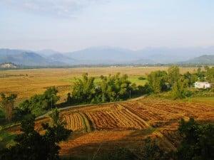 Phap Vien Thanh Son 1