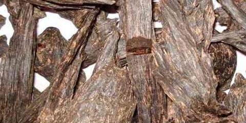 Agarwood-Discover nha trang-