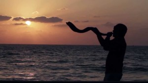 The Shofar calls us to wake up