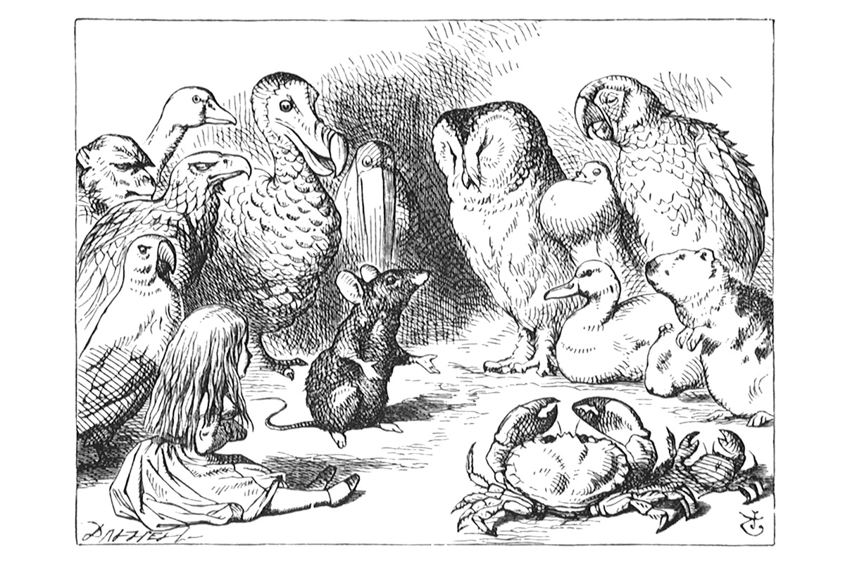 john-tenniel-alice-in-wonderland-wood-engravings-mouse-animals-gathered