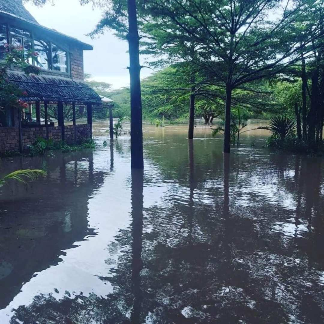 Flooding in Masai Mara - House in the Wild