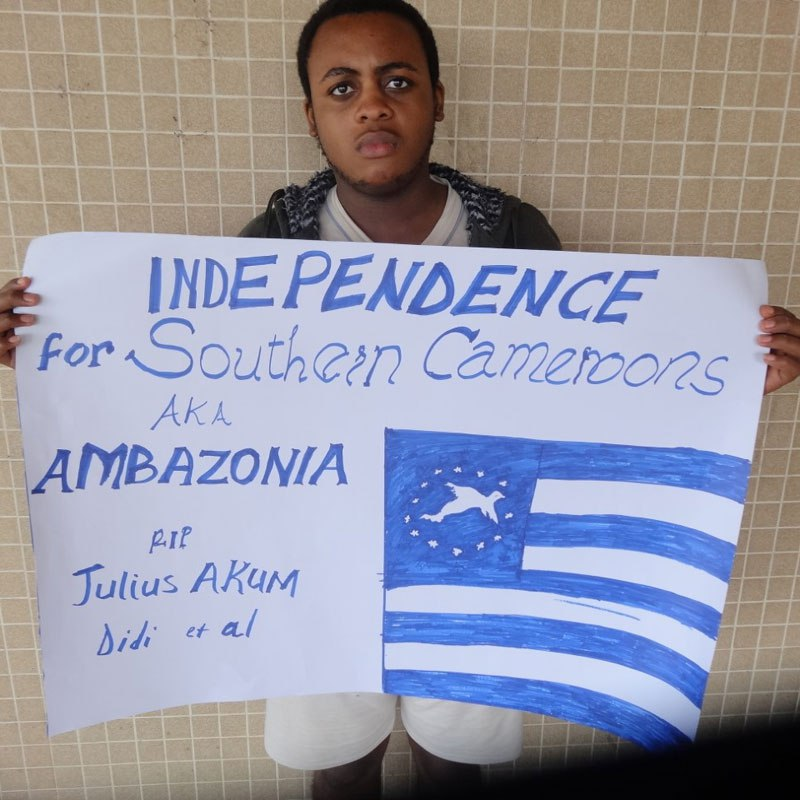Cameroon: A boy displays Ambazonia flag