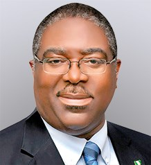 FIRS Nigeria: Nami promises to probe Tax Refund process during Fowler's era