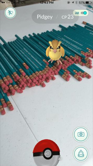 Pidgey on the pencils!!