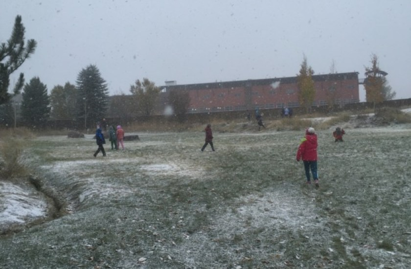 The snow is falling!