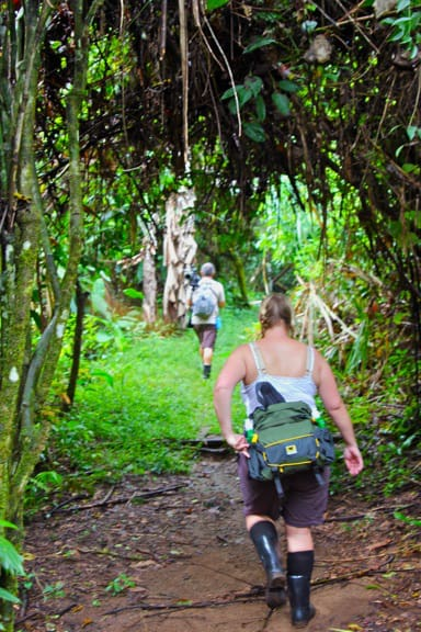 Hiking in Corcovado National Park, Costa Rica