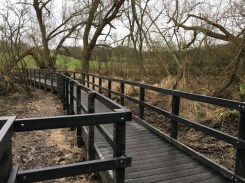 Worsbrough Boardwalk 3