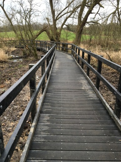 Worsbrough Boardwalk 2