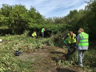Barnsley Main Work Day, 5 August 2016 (6)