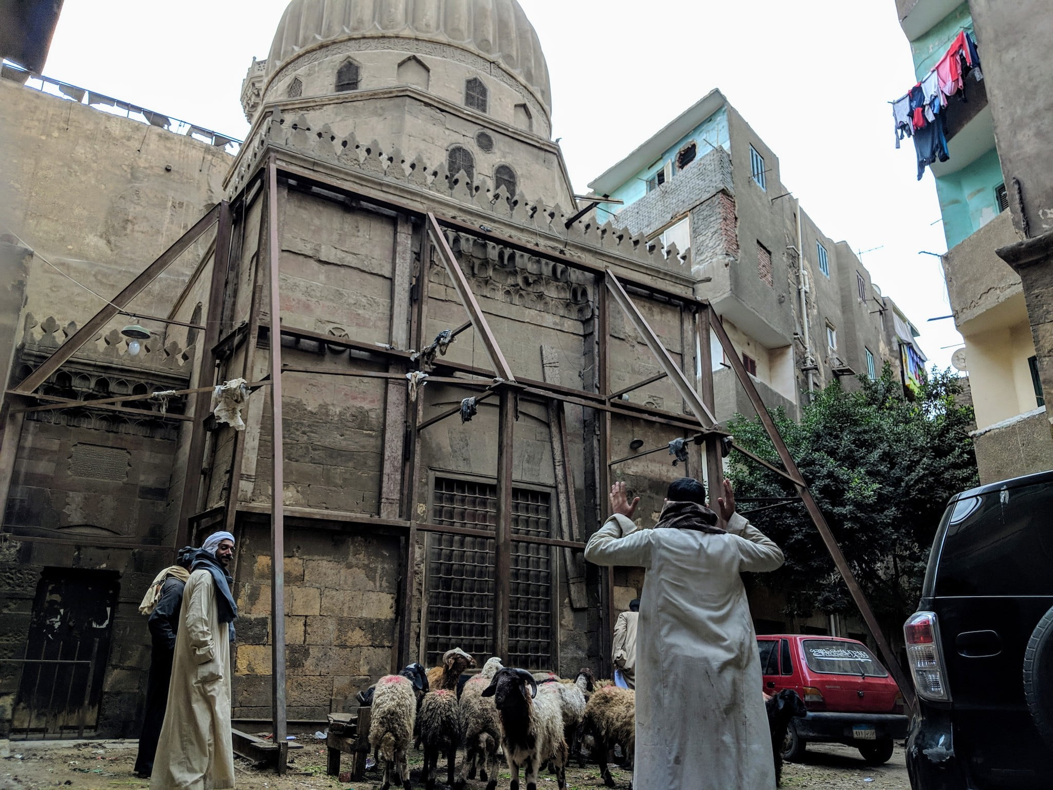 Discover Discomfort - Living in Cairo part 1 - Man with goats