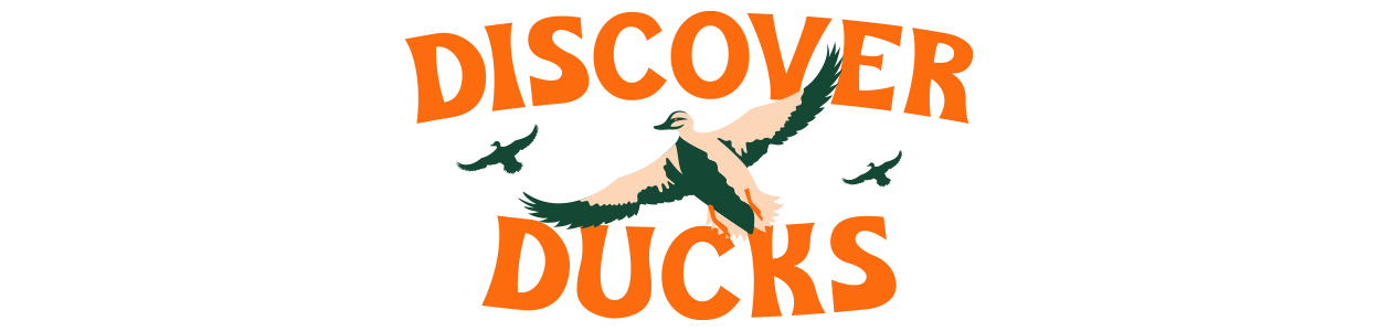 Discover Ducks