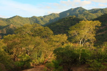 sierra lajuna mountains