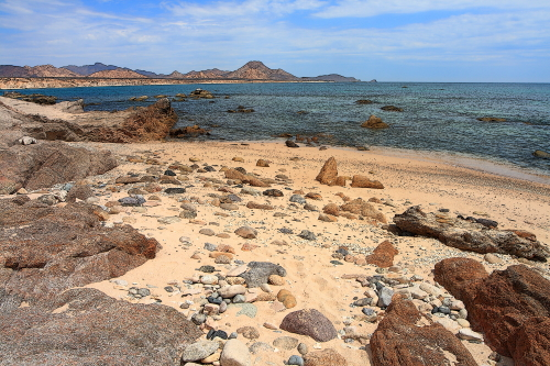 a rocky coastal ecosystem located in the desert environment of baja california sur