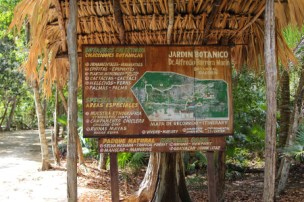 A guide to the exhibits found on the 4km interpretive trail