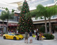 Christmas tree in front of the new mall on Qunita. Anybody want a Lamborghini for Christmas