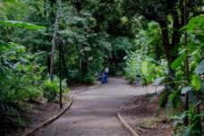 Uribe Botanical Gardens