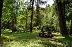 "Our picnic ""chill"" spot"