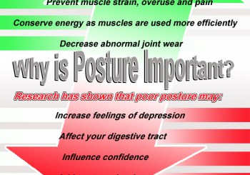 ken-caryl-colorado-chiropractic-posture-infographic