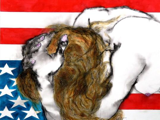 America the Beautiful: XVII (Dead Stars Falling III)
