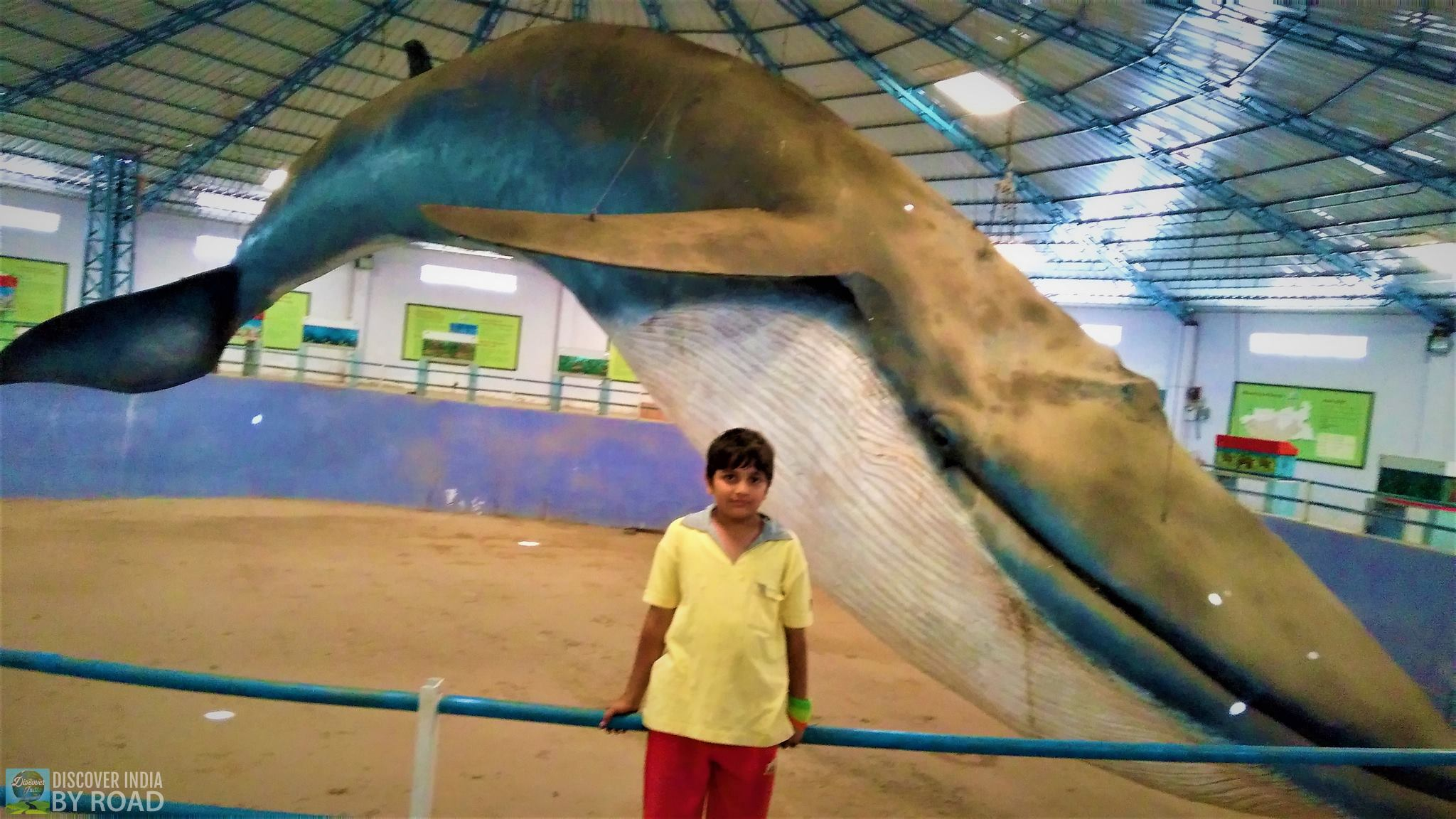 Blue Whale Park at hill garden bhuj