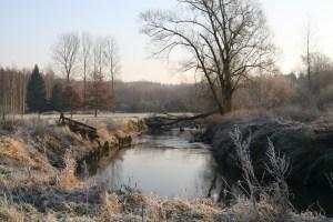 River Dijle Neerijse