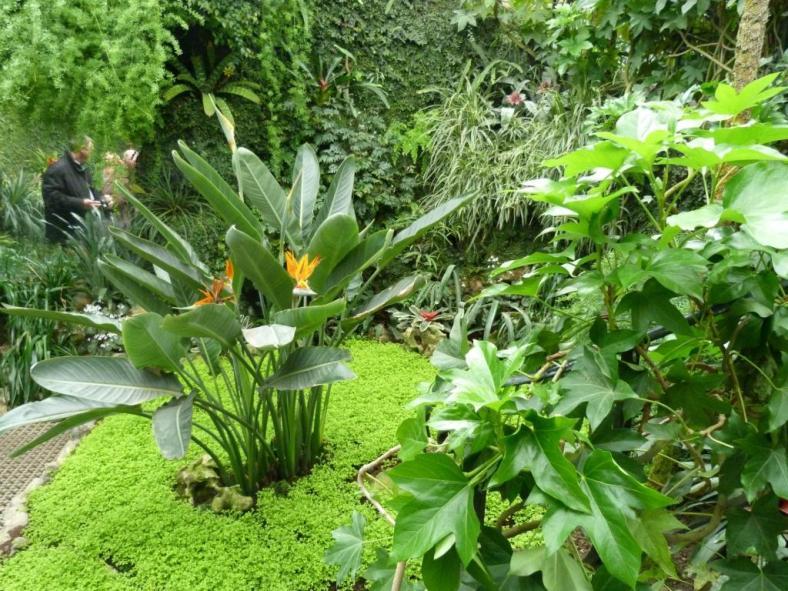Royal_Greenhouses_4